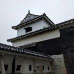 松山旅行記2日目その2 〜 記憶にございません